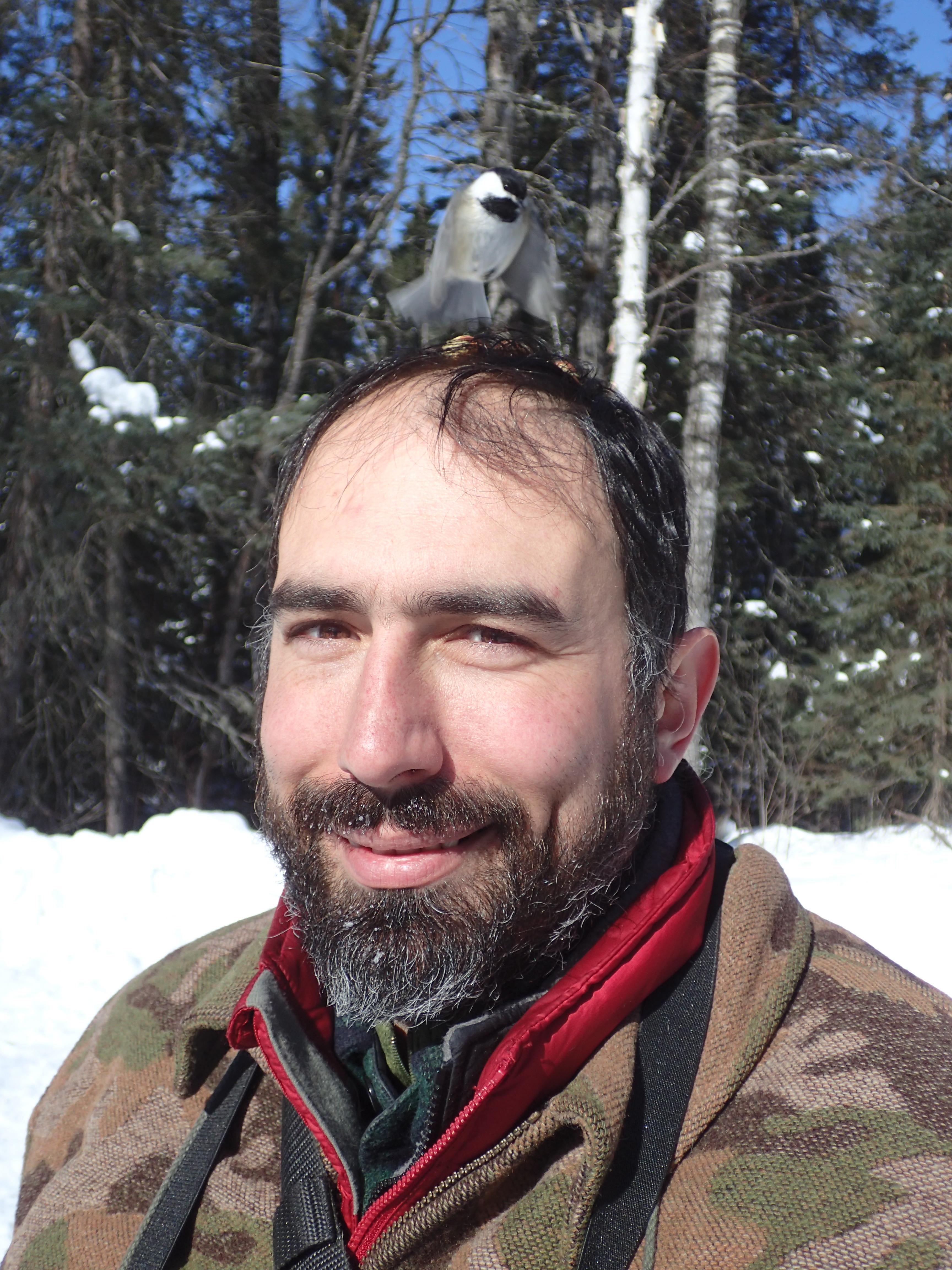 Chickadee on my head